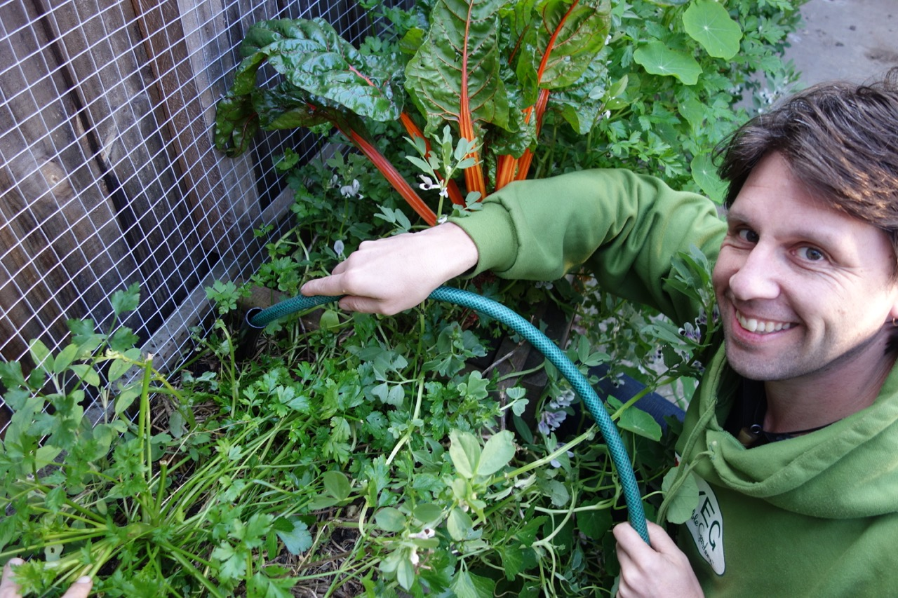 jeremy fills a wicking bed