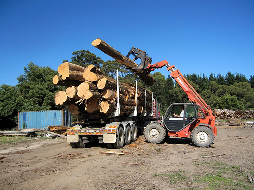 cypress timber logs on truck