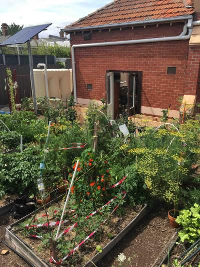 Armadale Community Garden wicking beds