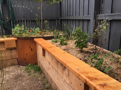 Private garden veggie beds, Brunswick East, Melbourne